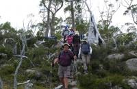 Tasmania Western Wilderness
