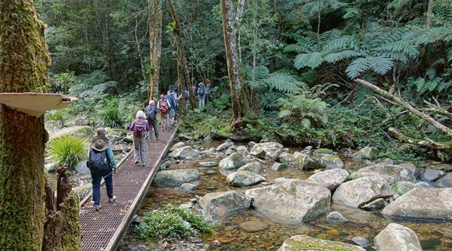 guided walking holidays New South Wales - Yuraygir to Dorrigo