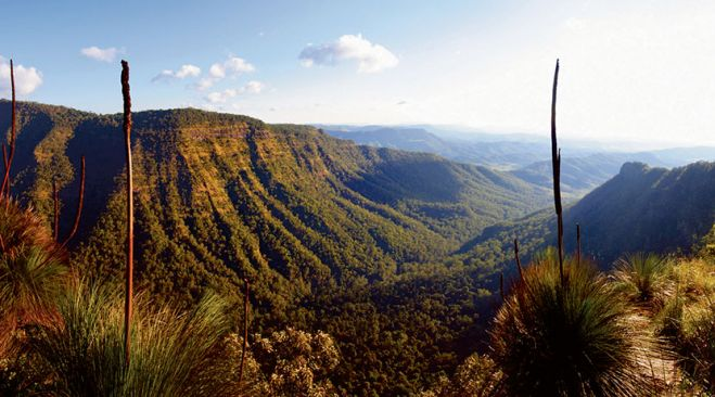guided walking holidays Gold Coast Hinterland Great Walk