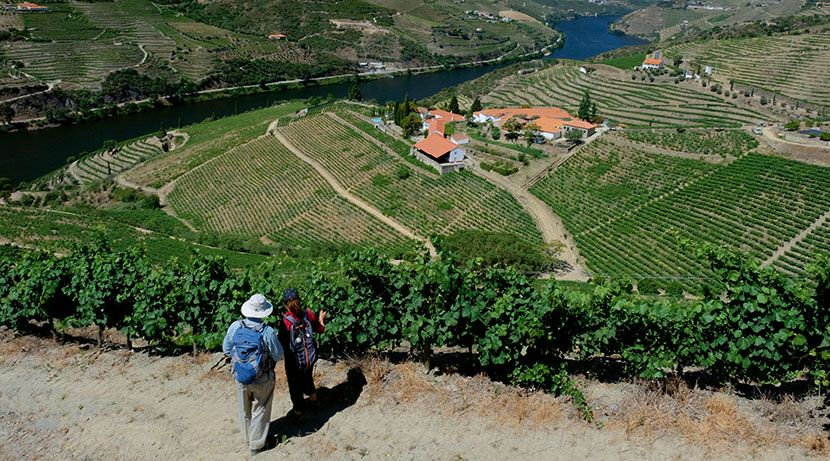 The Best of Portugal Walking Holiday