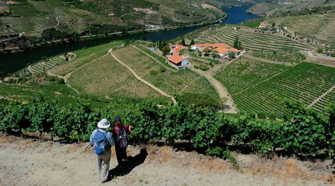 guided walking holidays The Best of Portugal