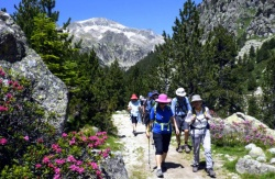 Northern Spain - Highlights of the Pyrenees